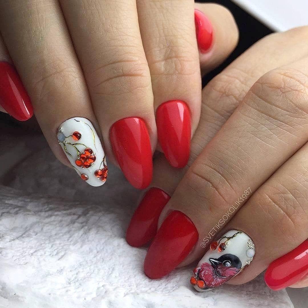 Ногти со снегирями фото